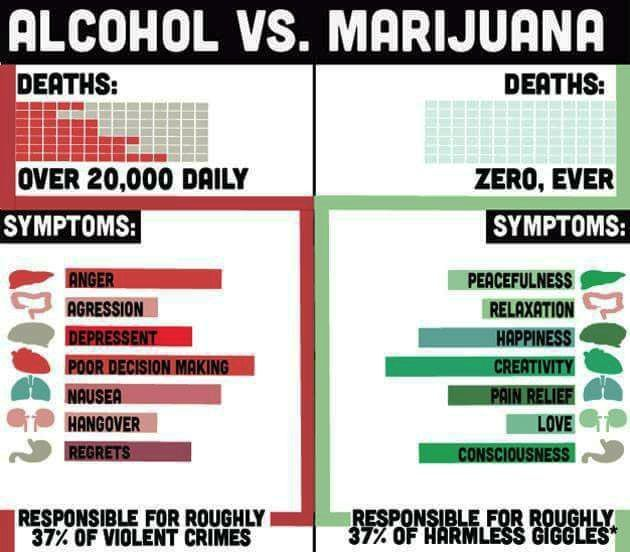 Alcohol_vs_Marijuana.jpg