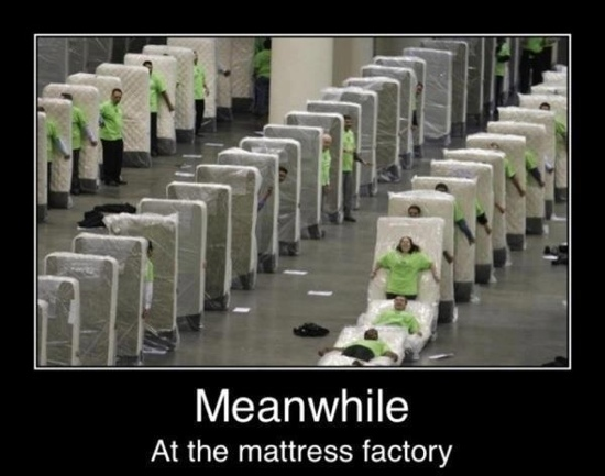 Meanwhile-At-The-Mattress-Factory-Funny-Bored-Meme-Image.jpg